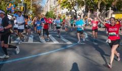 Cholin: živina pro maratonský finiš